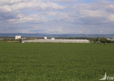 Hanovice (2)